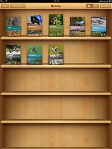 Digitales Büchergestell