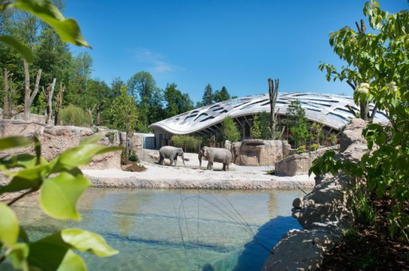 Elefantenpark, © Jean-Luc Grossmann/Zoo Zürich