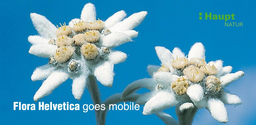 http://www.haupt.ch/Verlag/Apps-E-Books/Apps/Flora-Helvetica-Pro-deutsch.html
