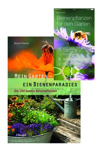 Kremer, Mein Garten